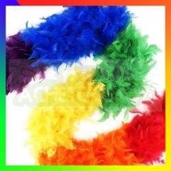 boa gay pride
