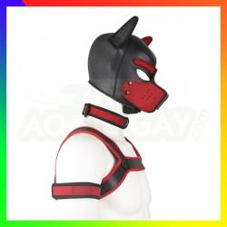 Kit dog training rouge