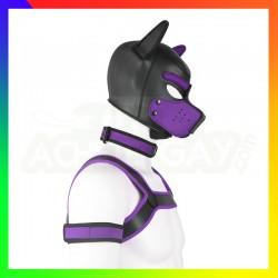 Kit dog training violet