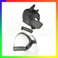 Kit dog training gris