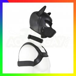 Kit dog training noir