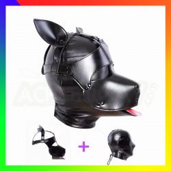 Masque Dog training
