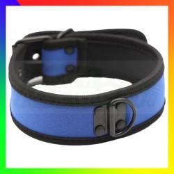 Collier dog training bleu