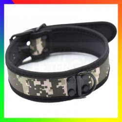 Collier dog training militaire