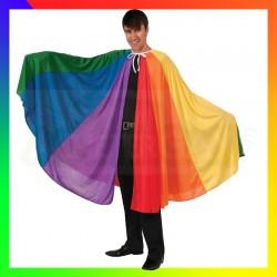 Cape LGBT rainbow