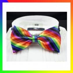 noeud papillon rainbow